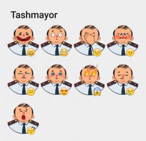 tashmayor